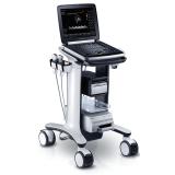 Роял Медикал Трейдинг: ультразвуковой сканер ugeo hm70a купить в Санкт-Петербурге