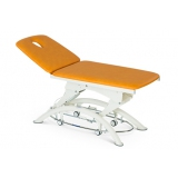 Роял Медикал Трейдинг: стол массажный lojer 205e купить в Новосибирске
